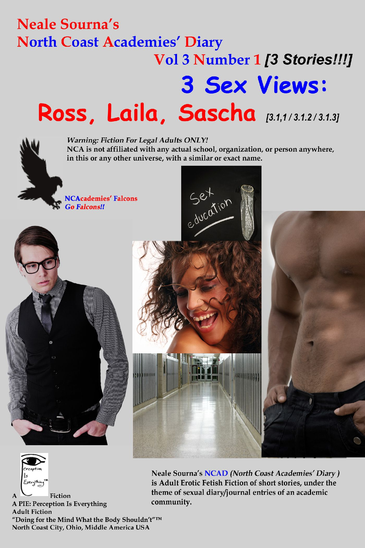 book cover 3 Sex Views: Ross, Laila, & Sascha by Neale Sourna
